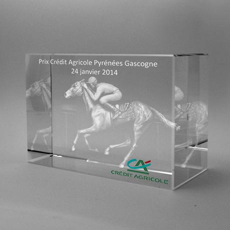 Trophée Rectangulaire en verre avec modèle 3D de notre collection.