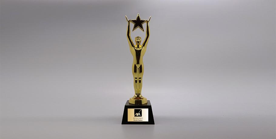 Trophée-metal-doré-socle-marbrenoir-marquag-plaque-metallisée-gloire