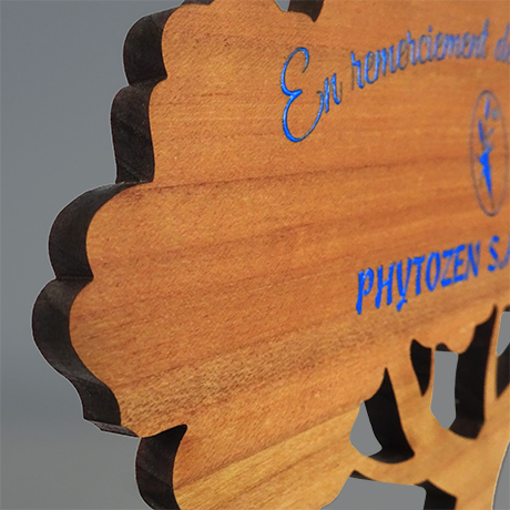 Trophee-bois-chene-arbre-objet de bureau-zoom02