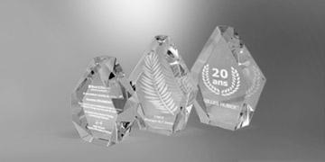 Trophée- gaia-vignette-marquage-laser-3D-impression-numérique